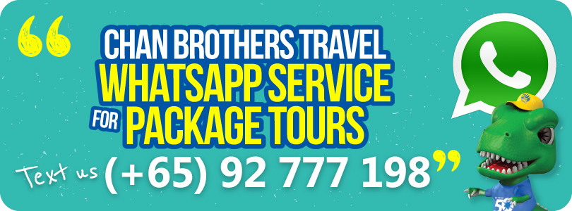 44273live_chat_whatsapp_package_tours.jpg
